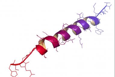 dirbtinis_baltymas-e881c087f79b8a662dbf6ecc590f9d5b.png