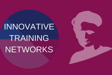 new_visual_innovativetrainingnetworks_0-4667b4cbe3329fd4e859a8b584e3913f.png